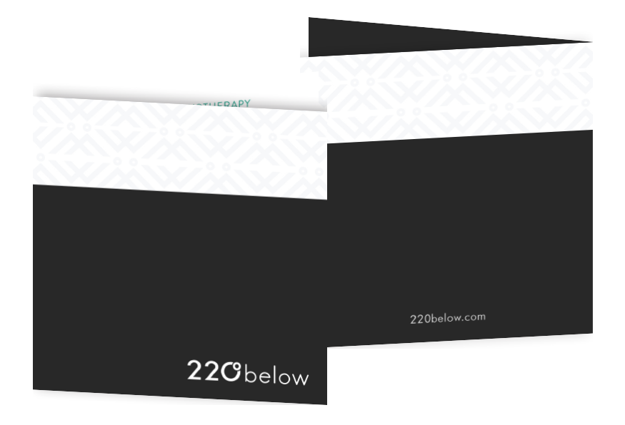 220 below branded brochure
